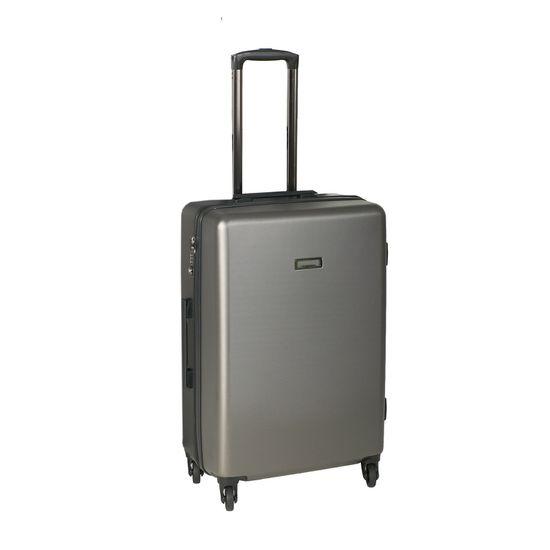 Wagner Luggage Lecon Case Gunmetal silber 4-Rollen Trolley L 77cm